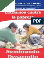 Revista Lucha Contra La Pobreza Municipal Id Ad Villa Maria Del Triunfo - 2006