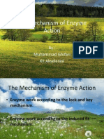 The Mechanism of Enzyme Action