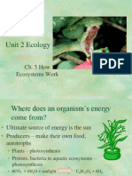 Ch 5 How Ecosystems Work