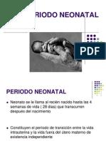 1º periodo Neonatal