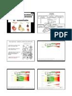 Fisiologia Vegetal - Fruto II 2009