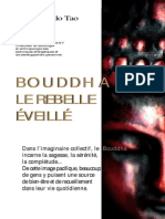 42545210 Bouddha Le Rebelle Eveille