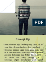 Reproduksi Alga