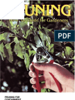 6622374 Pruning Orchard Care