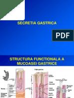 Secretia Gastrica - Ani Medicina 2010