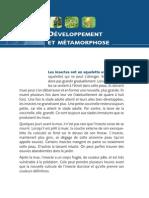 017-021_Developpement