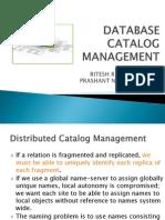 Database Catalog Management