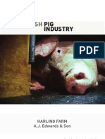Cruelty of the British Pig Industry