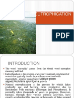 Eutrophication Final