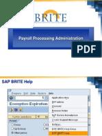 18322637 SAP Payroll Processing Administration