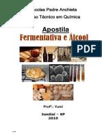 FERMENTATIVA E ALCOOL - 2010