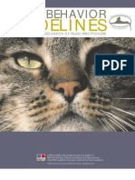 Feline Behavior Guidelines