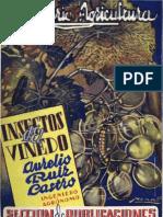 """""""Insectos del Viñedo"""" de Aurelio Ruiz Castro 1943"""