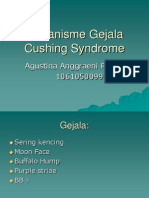 Mekanisme Gejala Cushing Syndrome