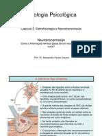 Neurotransmissao