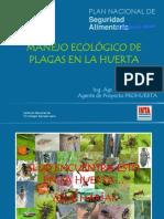Control Ecologico de Plagas en La Huerta-Cordoba