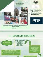CONTEXTUALIZACIÓN CURRICULAR C.E.I