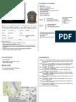 Paranthropus Aethiopicus - Cheatsheet