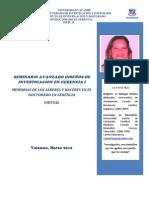 Port a Folio Virtual Yasmin IV