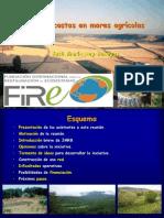 Mares Agricolas Fire08
