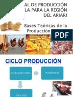 capacitacion PRODUCCIÓN AVICOLA teoria basica imagenes 2