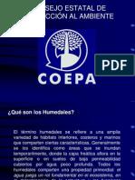 12.Humedales Cultura Del Agua