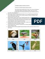 Bentuk Paruh Burung Berdasarkan Makanannya