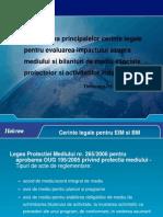 Madalina Popescu Halcrow Evaluare Impact Mediu