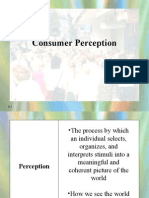 Perception Auto Saved]