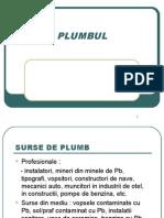 Plumbul