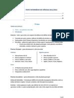 TESTE INTERMÉDIO DE CIÊNCIAS