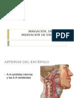 14. IRRIGACIÓN Y DRENAJE DE ENCÉFALO Y MÉDULA