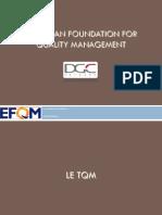 EFQM 09-10