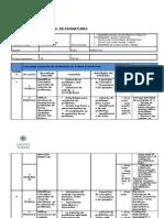 (Formulario)Planificacion Estructura de Programacion-15!02!2011