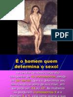 FISIOLOGIA DA PUBERDADE