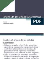 Origen de Las Celulas Eucariotas 86f93094a3d