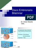 Disco Embrionario Bilaminar
