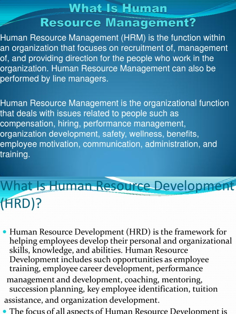 Personnel Management in the Organization: Ways of Motivation and Ways of Employee Development