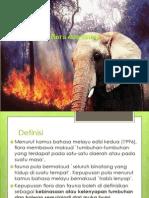 Kepupusan Flora Dan Fauna