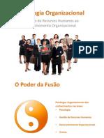 PsiOrganizacional