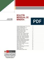 BOLETIN ENERO 12