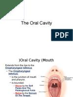 Tongue and Palate