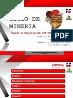 Liver Rojas Ciclo de Mineria