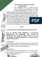 Conclusiones+Del+Pleno+Nacional+Constitucional