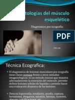 patologias musculoesqueletico