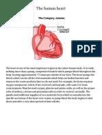 The Human Heart Fantastic