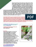 Estudio preliminar de la necrópolis talayótica de Son Bou (Alaior, Menorca)