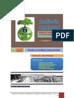 Trabajo de Auditoría Ambiental - versión 01
