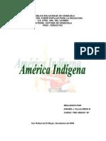 America Indigena