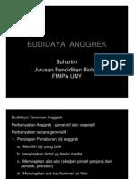 Budidaya Anggrek [Compatibility Mode]